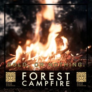 Night Forest Campfire | White Noise | ASMR & Relaxation