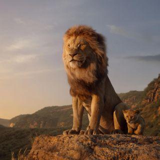 Lion King - 2019-07-18