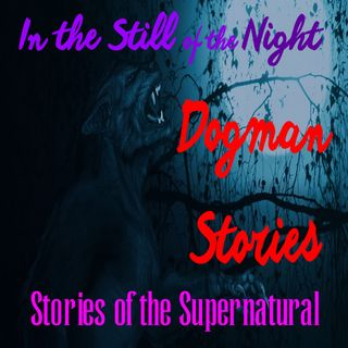 In the Still of the Night | Dogman Stories | Stories of the Supernatural