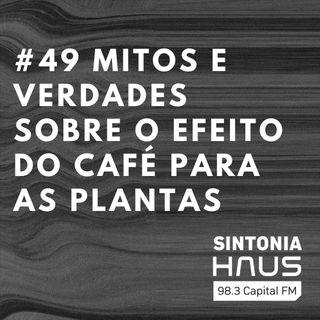 Aprenda a usar resíduos do café para ter plantas mais saudáveis | SINTONIA HAUS #49