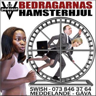 BEDRAGARNAS HAMSTERHJUL