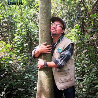 NUESTRO OXÍGENO Parque ecológico Cayalá Guatemala II - Manuel Girón