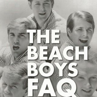 123 - Jon Stebbins - Beach Boys FAQ