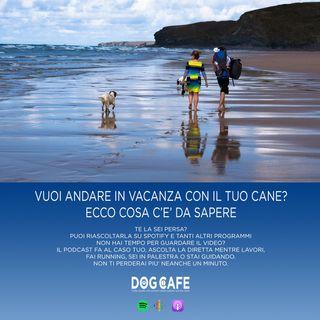 #29 - Vuoi andare in vacanza con il tuo cane? Ecco cosa c'è da sapere.