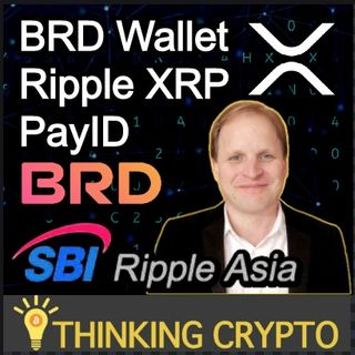 Ripple XRP & ODL Adoption & PayID - CEO of BRD Wallet & SBI Ripple Asia Adam Traidman Interview