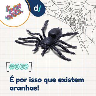 É Por Isso! #09 - É por isso que existem aranhas!