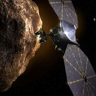Leaders of the Lucy asteroid mission
