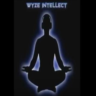 054 The Remix 2nd Edition Episode - Wyze Intellect
