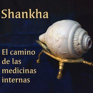 Episodio 0: SHANKHA