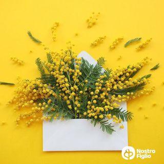 Filastrocca della donna e della mimosa