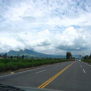 Impacto de las carreteras en el medio ambiente