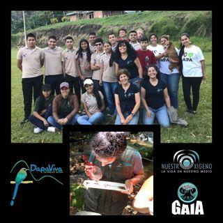 NUESTRO OXÍGENO Semillas Fundación Dapa Viva