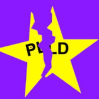 La costosa división del PLD