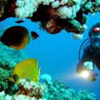 Scuba Diving Trip | Karthik Tours & Travels