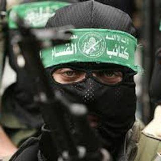 Greenlights for terrorists