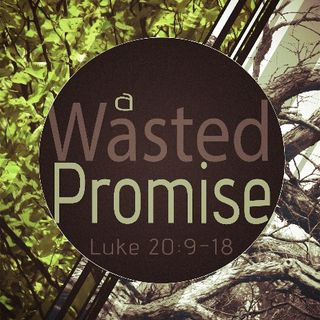 A Wasted Promise