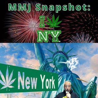 Snapshot of America's MMJ Market New York