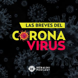 México llega este martes 11 de mayo a las 219 mil 323muertes a causa del Covid-19