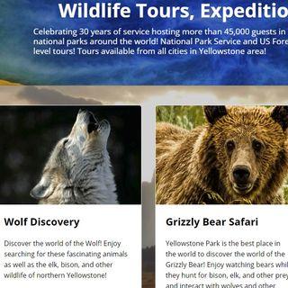 The Buzz - Ep. 25 New Yellowstone Yearround Website!