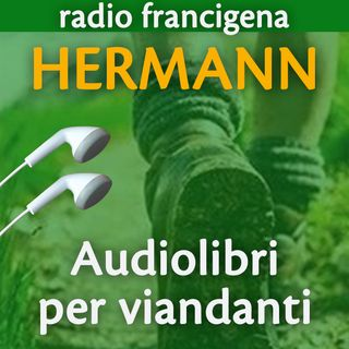 Luglio 2020 ǀ Quattro audiolibri, nove voci: Ballestra, Baldassarre, Rufin, De Santis, Malaguti, Rocchi, Polo, Pozza, Lomazzi