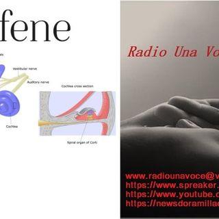 RUBRICA MALATTIE: L'ACUFENE