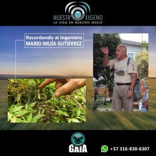 NUESTRO OXÍGENO Recordando al Ing. Mario Mejía Gutiérrez
