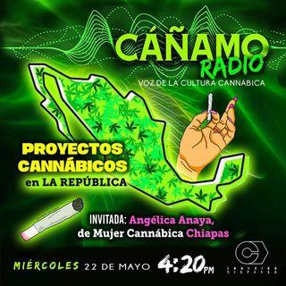 Canamo Radio 420 Emision 49
