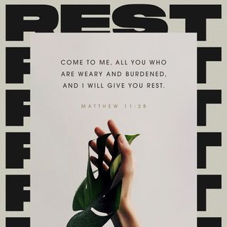 Episode 308 - Matthew 11:28 (April 3, 2019)