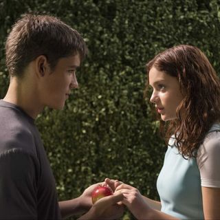 """The Giver"" Movie Talk - Function and Whims"