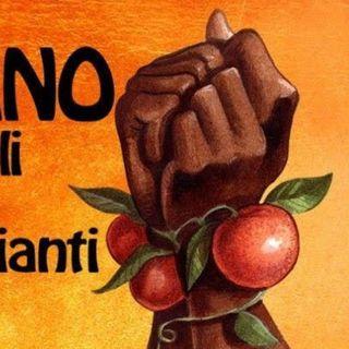 SOS Rosarno: riparte la campagna ordinazioni