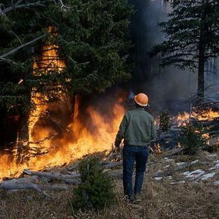 Incendi boschivi, dichiarato lo stato di grave pericolosità anche in 73 comuni berici