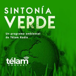 Sintonía Verde