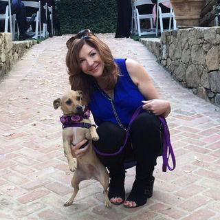 "Interview with Laura Vorreyer author of ""The Pet Sitter's Tale"""