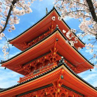 Japonya 2. Bölüm: Kyoto Tapınakları, Zen Bahçeleri, Wabi-Sabi kavramı, Ryokan ve Kaiseki Deneyimi
