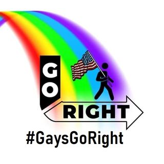 Why are Leftist Gays So Easily Fooled and Triggered?