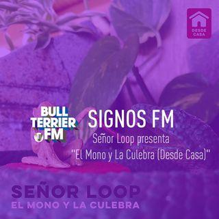 """Señor Loop presenta """"El Mono y La Culebra (Desde Casa)"""" - SignosFM"""