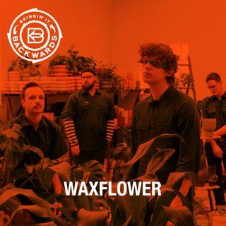 Interview with Waxflower