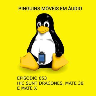 PMA 053 - Hic sunt dracones, Mate 30 e Mate X