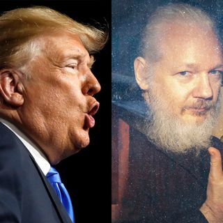 Hey Trump: Remember Wikileaks? +