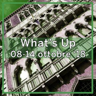 What's Up: 08-14 ottobre 2018