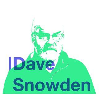 Dave Snowden: Cynefin Framework