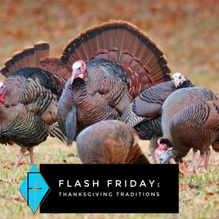 Flash Friday 011: Thanksgiving Traditions {or, not!}