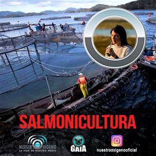 NUESTRO OXÍGENO Salmonicultura documental Contracorriente - Martina Sasso