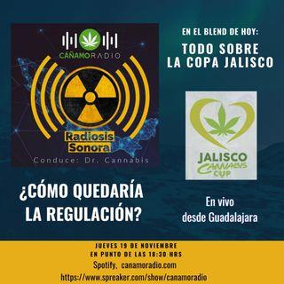 Radiosis Sonora Numero 16