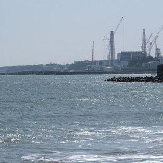 Giappone, l'acqua contaminata di Fukushima verrà rilasciata in mare