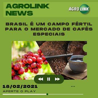 Agrolink News - Destaques do dia 18 de fevereiro