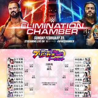 WWE Elimination Chamber & TJPW Max Heart Tag Tournament Predictions