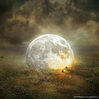 A Beautiful Lie-Dead-Saqib Abraham