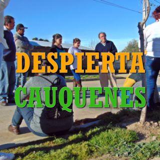 #DespiertaCauquenes: Campañas limpias y debate de ideas para una ciudad justa