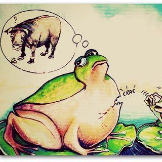 La rana e il bue